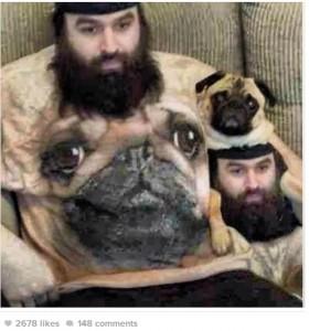 dog-shirt
